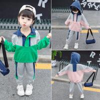 女孩童装洋气运动套装女宝宝两件套2019新款韩版女童秋装