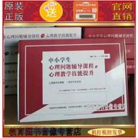 正版包发票 打通销售管理 销售漏斗的核心原理 方法和工具 付遥 5DVD+3CD+手册培训讲座视频 正规北京增值税机打