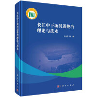 长江中下游河道整治理论与技术