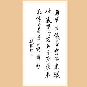 著名书法家 赵朴初(书法)ZH529附作品集+合影