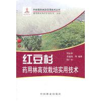 红豆杉药用林高效益栽培实用技术