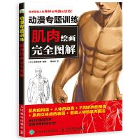 动漫专题训练 肌肉绘画完全图解