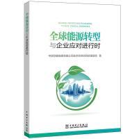 全球能源转型与企业应对进行时 中国电力出版社