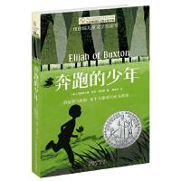 长青藤国际大奖小说・第七辑:奔跑的少年