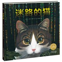 绘本花园:迷路的猫(平)