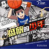 盛放的少年 中国电力出版社