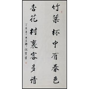 河南省书协会员 翟继灵(对联)ZH55