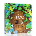 英文原版 Usborne peep inside a tree偷偷看里面系列 大树 洞洞书 科普纸板翻翻书 启蒙学习