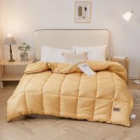 伊迪梦家纺 新款被芯安塞丝羽丝绒纤维被纯色柔软立体被床上用品被子单人双人床PV33