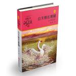 动物小说大王沈石溪・品藏书系:白天鹅红珊瑚(升级版)