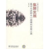 集聚发展:城市化进程中小城镇的发展之路(城市化研究系列)