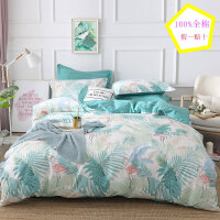 100%全棉网红款四件套纯棉床单被套简约单双人床上用品床笠式春夏