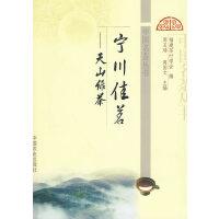 宁川佳茗――天山绿茶