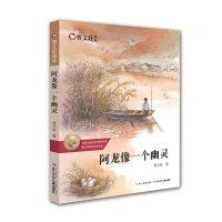 曹文轩画本―阿龙像一个幽灵
