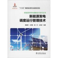 新能源发电调度运行管理技术 中国电力出版社