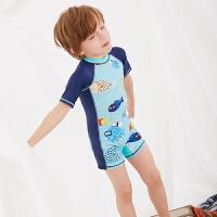 男孩泳装2019儿童泳衣 男童中小童连体速干泳衣套装