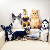 异形宠物抱枕定制来图照片订做diy猫猫狗狗兔鸟纪念动物创意抱枕 70x70cm 绒面
