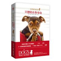 只想陪在你身边 一条狗的使命 W.布鲁斯・卡梅隆 人与动物的温暖相遇外国现代当代文学随笔长篇小说