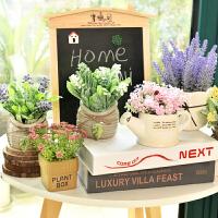 仿真植物装饰盆栽北欧绿植摆件ins家居室内客厅多肉假花盆景摆设