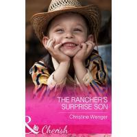 The Rancher's Surprise Son (Mills & Boon Cherish) (Gold Buck