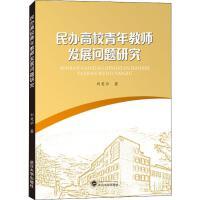 民办高校青年教师发展问题研究 武汉大学出版社
