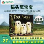 #点读版 凯迪克图书 廖彩杏书单 Owl Babies 猫头鹰宝宝 英文原版绘本