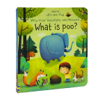 Usborne 原版英文 Very first Questions and Answers 问与答系列 What is