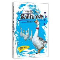 金曾豪动物小说精选集:戴领结的鹅