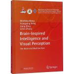 类脑智能与视觉感知 华中科技大学出版社