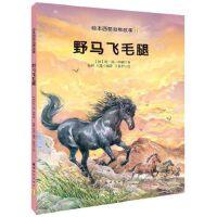 绘本西顿动物故事11:野马飞毛腿(精装绘本)