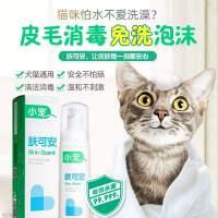新款肤可安猫咪黑下巴清洁杀菌猫藓消毒液猫洗澡免洗泡沫宠物用品