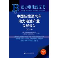 现货 官方正版 中国新能源汽车动力电池产业发展报告(2019) 中国汽车技术研究中心有限公司 大连松下汽车能源有限公司