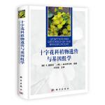 【按需印刷】-十字花科植物遗传与基因组学