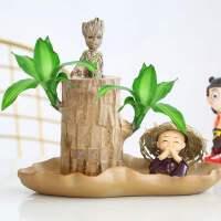 巴西木水养迷你盆栽幸运木办公室内桌面格鲁特带芽水培绿植物