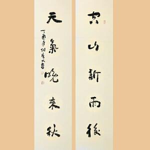 一级书法师 胡广明(对联)ZH267
