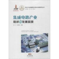 集成电路产业现状与发展前景 陈志,胡晓珍 编著
