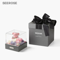 六一儿童节SEEROSE进口永生花苔藓玫瑰小熊礼盒母亲节520情人节表白生日礼物 -礼盒装(植绒熊款)