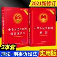 2021新版 中华人民共和国刑法+刑事诉讼法 实用版(2本套)中国法制出版社