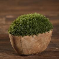 装饰品摆件创意客厅酒柜摆设家居饰品树脂工艺品仿真小盆栽摆件桌面绿植摆件