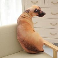 创意仿真狗狗抱枕3d毛绒玩具韩国搞怪公仔大号布娃娃可爱女生玩偶创意公仔