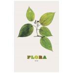 Nick Knight - Flora,尼克・奈特:弗洛拉 花卉摄影