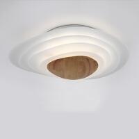 北欧简约led卧室吸顶灯 创意设计师客厅灯具房间灯日式榻榻米灯饰 30W大 无极调光