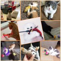 猫自嗨逗猫棒耐咬羽毛铃铛神器逗猫玩具小猫猫薄荷球猫咪用品