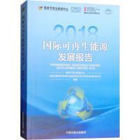 国际可再生能源发展报告 2018 中国环境科学出版社