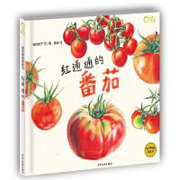我爱蔬菜系列:红通通的番茄