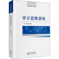 审计思维训练 经济科学出版社