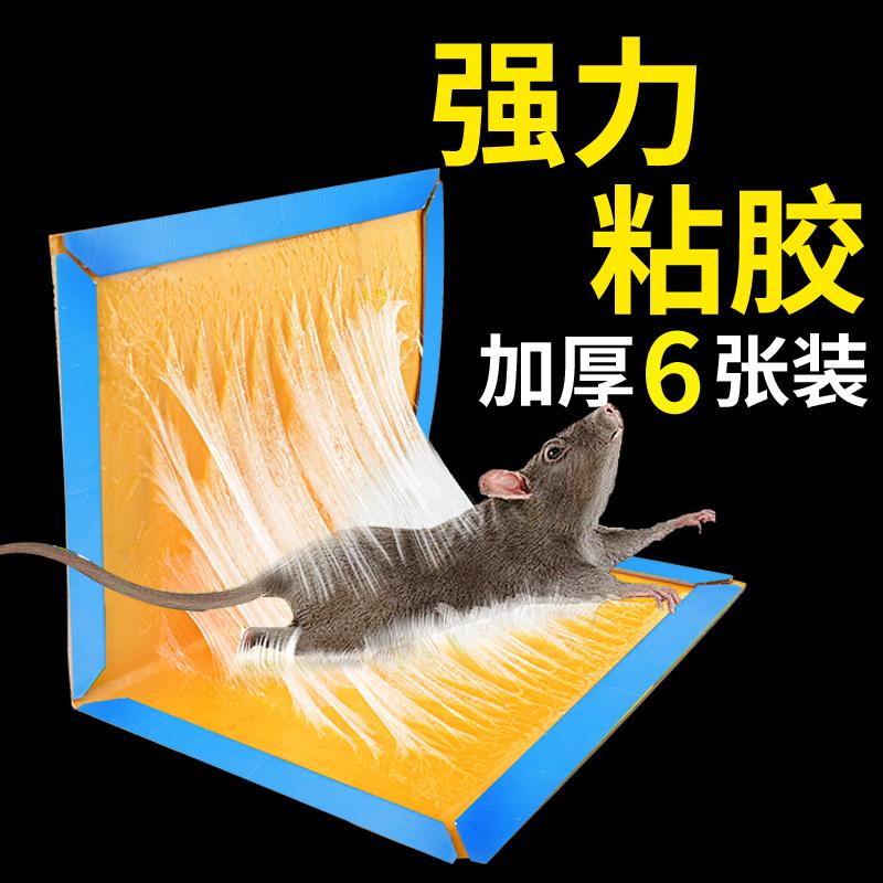 老鼠贴力粘鼠板驱鼠灭鼠器胶沾捕鼠家用 6张装