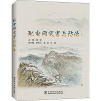 配电网灾害与防治 中国电力出版社