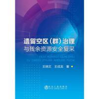 遗留空区(群)治理与残余资源安全复采 冶金工业出版社