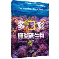 多彩珊瑚礁生物